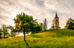 Growing Spiritually in the Kingdom of God